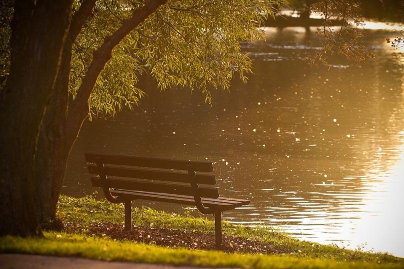 bench-801727_960_720
